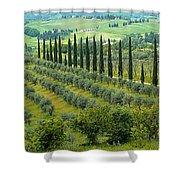 Tuscan Panoramic 3 Shower Curtain
