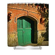 Tuscany Door With Horse Head Carvings Shower Curtain