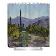 The Serene Desert Shower Curtain