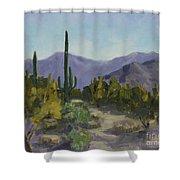The Serene Desert Shower Curtain