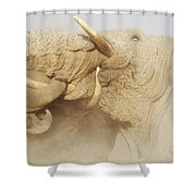 Tusker Tension Shower Curtain