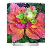 Tutu Dancer Flower Shower Curtain