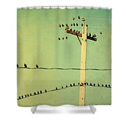 Tweeters Tweeting Shower Curtain