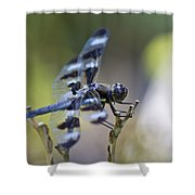 Twelve Spot Hanging Out Shower Curtain