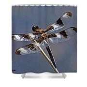 Twelve-spotted Skimmer Shower Curtain