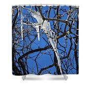 Twigs And Ice Shower Curtain