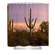 Twilight After Sunset In The Cactus Forests Of Saguaro National Park Shower Curtain