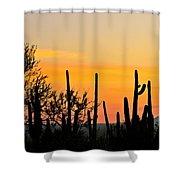 Twilight After Sunset Sonoran Desert Shower Curtain