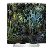 Twilight Deep In Florida Shower Curtain
