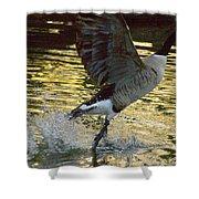 Twilight Goose I Shower Curtain