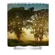 Twilight Guardians. Misty Roads Of Scotland Shower Curtain by Jenny Rainbow