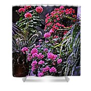 Twilight In The Courtyard Shower Curtain