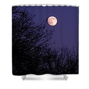 Twilight Moon Shower Curtain by Rona Black