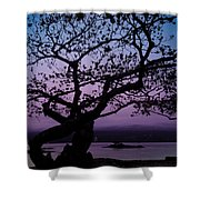 Twilight On Hilo Bay Hawaii Shower Curtain