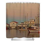 Twilight Shower Curtain by Randy Hall