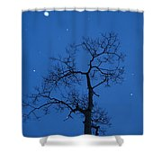 Twilight  Tracery  Shower Curtain