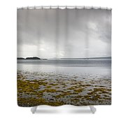 Twillingate Bay Shower Curtain