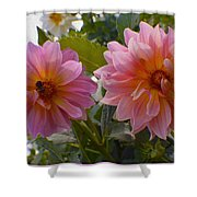 Twin Delight Shower Curtain