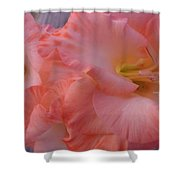 Twin Gladiola Blooms Shower Curtain