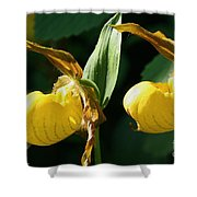 Twin Slippers Shower Curtain