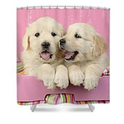 Twin White Labs In Pink Basket Shower Curtain by Greg Cuddiford