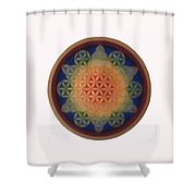 Twinkle Star Shower Curtain
