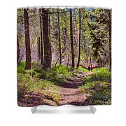 Twisp River Trail Shower Curtain