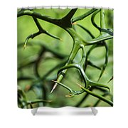 Twisted 2 Shower Curtain