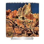 Twisted And Colorful Shower Curtain