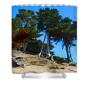 Twisted Cypress  Shower Curtain