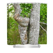 Twisted Trunk Shower Curtain