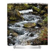 Twisted Waters Shower Curtain