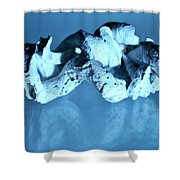 Twisted Worm Shells Shower Curtain