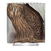 Twit Twoo Shower Curtain