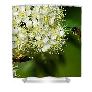 Two Bees On A Rowan Truss - Featured 3 Shower Curtain