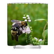 Two Bees On Flower Shower Curtain