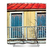 Two Blue Doors Shower Curtain