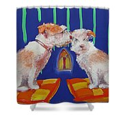 Two Border Terriers Together Shower Curtain