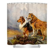 Two Collies Above A Lake Shower Curtain