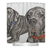 Two Cool Danes Shower Curtain