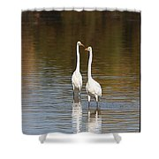 Two Egrets In The Pond Shower Curtain
