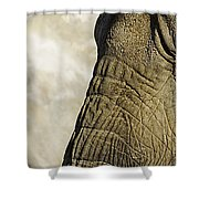 Two Elephants' Eyes Shower Curtain