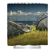 Two Forlorn Abandoned Boats On Prince Edward Island Shower Curtain