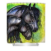 Two Fresian Horses Shower Curtain