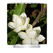 Awesome Blossoms Shower Curtain