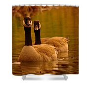 Two Geese In A Line Shower Curtain