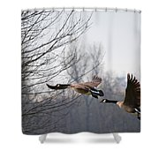 Two Geese In Flight Shower Curtain