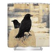 Two Graveyard Blackbirds Shower Curtain