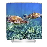 Two Green Turtles Shower Curtain