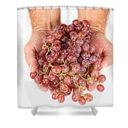 Two Handfuls Of Red Grapes Shower Curtain